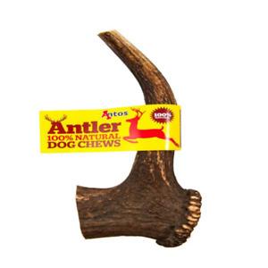 Antos Antler Dog Chews - Natural Dog Treats - 4 Sizes - Packs of 3