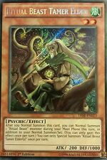 Yugioh Ritual Beast Complete Deck Core with some Extra Deck Cheap!