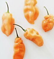 Habanero Peach Capsicum Chinense Hot Chili Pepper Seeds 10 PCS RARE!