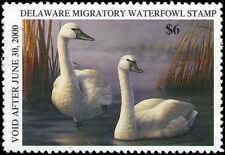 Delaware #20 1999 State Duck Tundra Swan by Russ Duerksen