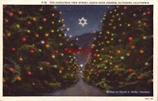 THE CHRISTMAS TREE STREET SANTA ROSA AVENUE ALTADENA, CA photo by Harold Parker