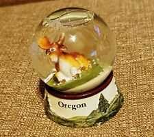 Beautiful Oregon Glass Snow Globe w/ Detailed Base - Great Condition