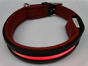 Firstclass LED LEDER Leuchthalsband