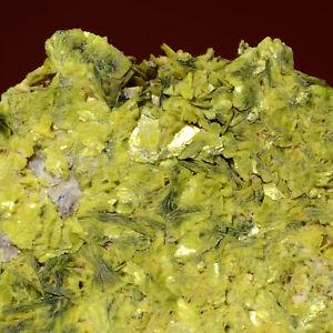 Bolona collection Autunite Daybreak Mine, Spokane County, Washington 261