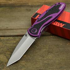 Kershaw Blur Stonewashed CTS-BDZ1 Assisted Open Purple Handle Knife 1670PURBDZ