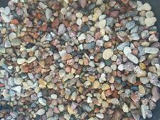 50  Lbs   Decorative Aquarium Gravel Stones & Pebbles for Fish Reptiles