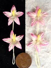 10 Star flower starflowers stargazer lily lilies pink Handmade mulberry paper