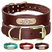 Personalized Premium Dog Collar with Metal Clasp Medium Large with Dog Name
