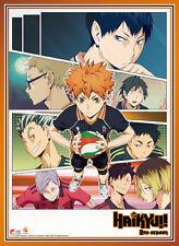 **Legit Poster** Haikyuu Hinata Kenma Koutaro Anime Key Art Wallscroll #86905