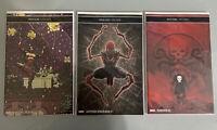 SPIDER-MAN #1, PUNISHER #5, SEAONS BEATINGS #1. STAN LEE Memorial, Variants NM!!