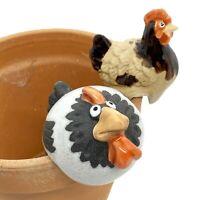 Black Cockerel & Chicken Pot Hanging Garden Bird Ornaments in Terracotta