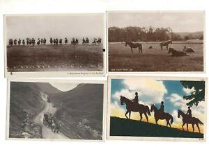 14 VINTAGE postcards:  HORSES & PONIES