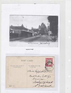 africa  to scotland 1905 stamps postcard Ref 9530