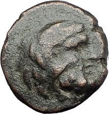 THASOS THRACE Island 250BC RARE R1 Authentic Ancient Greek Coin HERCULES i61560