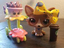 Littlest Pet Shop #3567 brown tan corgi dog