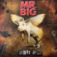 Mr. Big - What iF...(180g Vinyl LP),2011 frontiers