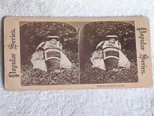 Native American Indian Papoose-Baby in Cradleboard/Albumen Stereoview