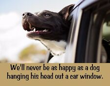 METAL FRIDGE MAGNET We Never Be Happy As Dog Head Out Car Window Humor Funny