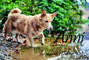 Aluminium Schild  personalisiert Foto individuel Geschenk Hund
