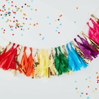 MULTI COLOURED TASSEL GARLAND - OVER THE RAINBOW, Party Decoration, Birthday