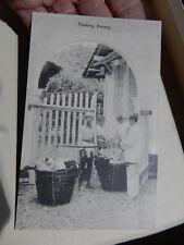 BATAVIA   TOEKANG BARANG     INDONESIA             authentic original postcard