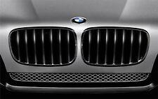 BMW Left Car Grills & Air Intakes