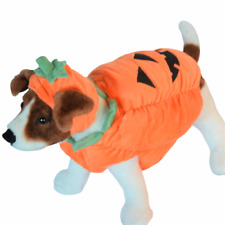 Pet Dog Pumpkin Halloween Costume Zack and Zoey Small