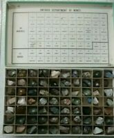 Ontario Department  of  Mines 70 Mineral  & Rock Specimens Cabinet .