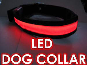 WATER PROOF RED LED DOG COLLARS SMALL MEDUIM LARGE SIZES