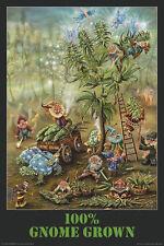 GNOME GROWN - WEED POSTER - 24x36 SHRINK WRAPPED - FANTASY POT MARIJUANA 24517