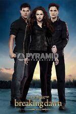 Breaking Dawn Part 2 Trio POSTER 60x90cm NEW * Twilight Edward Bella Jacob