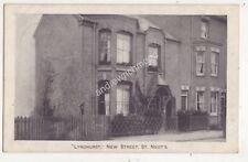 Lyndhurst New Street St Neots Huntingdonshire 1906 Postcard 685b