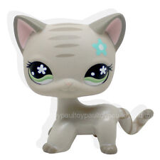 #483 RARE Littlest Pet Shop LPS Gray Short Hair CAT Green Eyes Blue Flower TOY