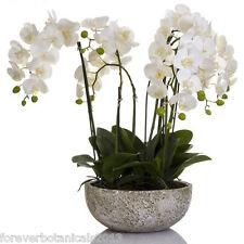 Orchid White Phalaenopsis in Clay Pot Artificial Plants Flowers SALE