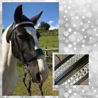 DIAMANTE BROWBAND  BLING THICK 1.5 INCH HUNTER STYLE IN BROWN OR BLACK