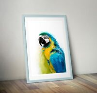 Parrot Macaw Watercolour PRINT of original painting signed by artist a4 a3 Blue