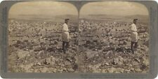 Berger à Eleusis Eleusina GRECE GREECE Photo Stereo Vintage Citrate