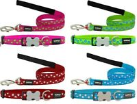 Red Dingo STAR Design Collar / Lead | Dog / Puppy | Sizes XS - LG | FREE P&P