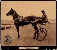 Vintage Photo Trade Card J & P Coats Six Cord Thread Famous Horses John R Gentry