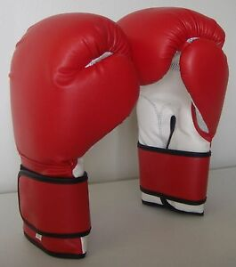 New, Boxing Gloves, Fast Shipping.