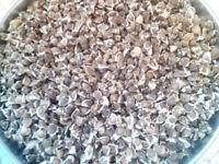 1kg 100% Pure Moringa Oleifera Seeds Organic NON-GMO No Pesticides Superfood