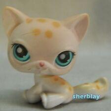 LPS Littlest Pet Shop Loose Figure CAT In The Picture Pets 224  CAT KITTEN