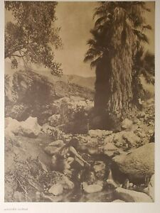 Cahuilla Indian Near Andre`s Canon Palm Springs Cal Edward Curtis 1900/72