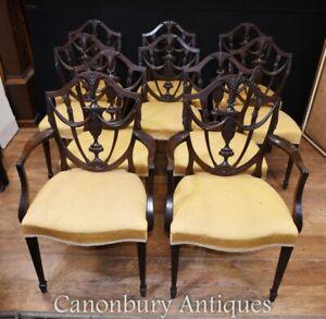 Set 10 Adams Shield Back Dining Chairs Mahogany