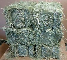 18 lbs.of Timothy Hay! Great For Livestock, Horses,Goats Get Six 3 lb. Bales