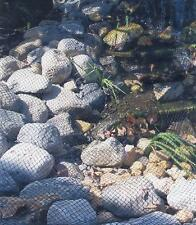 "7'x10' Light Knitted 5/8"" Aviary Pond Fish Net Netting + Ground Stakes"