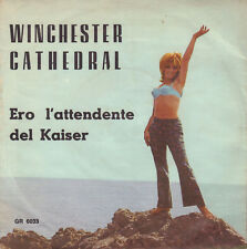 "ORCHESTRA MARIO BATTAINI - Winchester Cathedral (1967 VINYL SINGLE 7"" ITALY)"