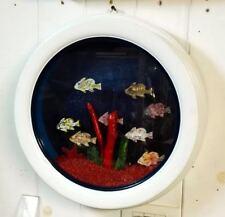 Acquario artigianale in cornice diametro cm. 38,5