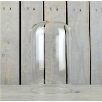 Large Glass Dome Display Cloche 30 cm