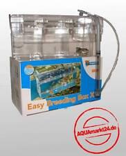 Aufzucht und Ablaichkasten  Easy Breeding Box XL 2Liter 2 Stück Sparpaket